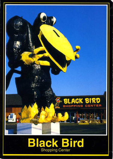Blackbird Shopping Center, Medford, OR